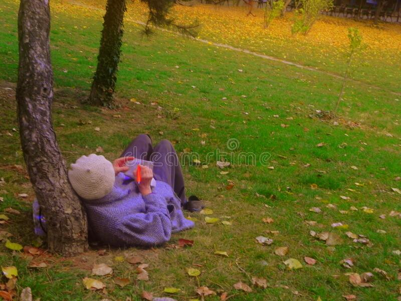 woman writing in the park stock photography