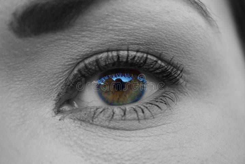 Woman's Eye Close Up Free Public Domain Cc0 Image