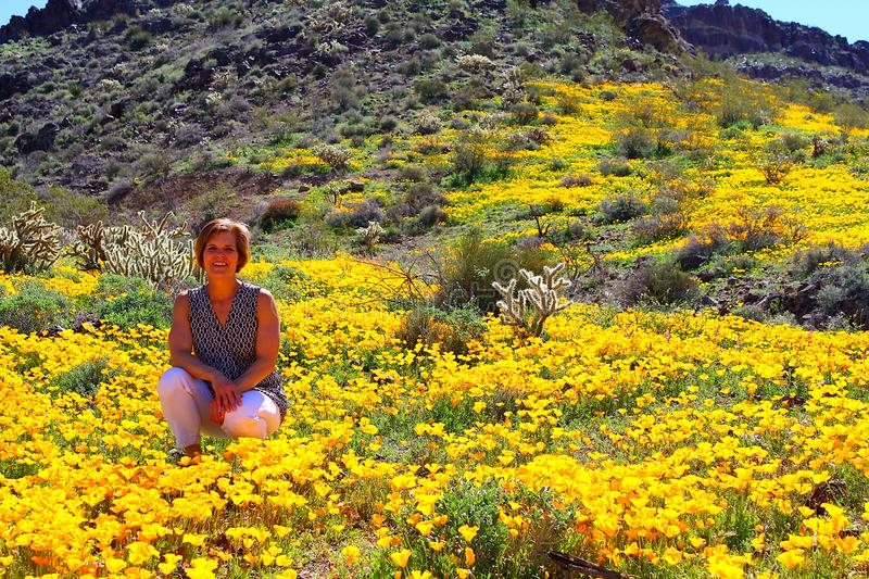 Woman in yellow blooming poppy field. royalty free stock photography