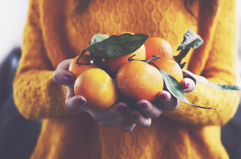 Woman in yellow knitted pullover with ripe clementines stock photo
