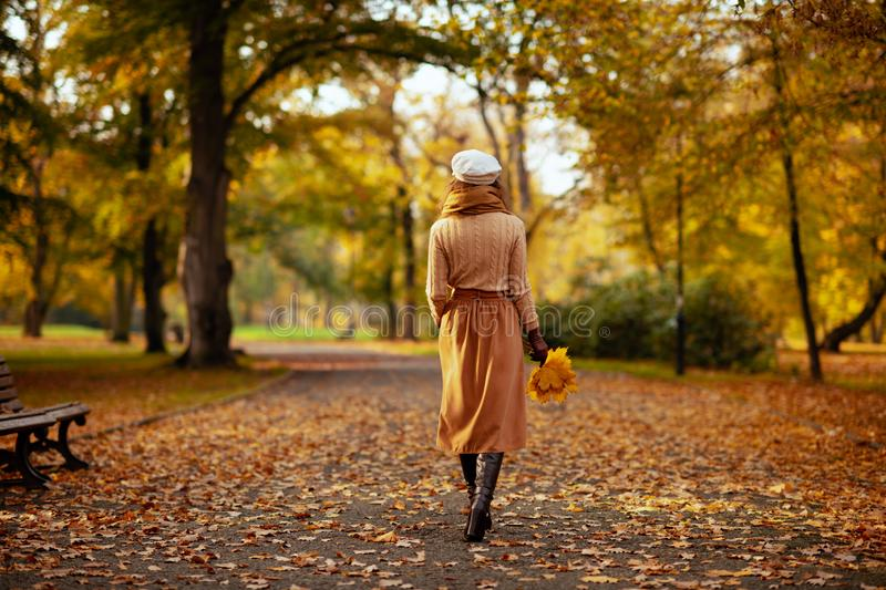 Woman with yellow leaves walking outdoors in autumn park royalty free stock photography