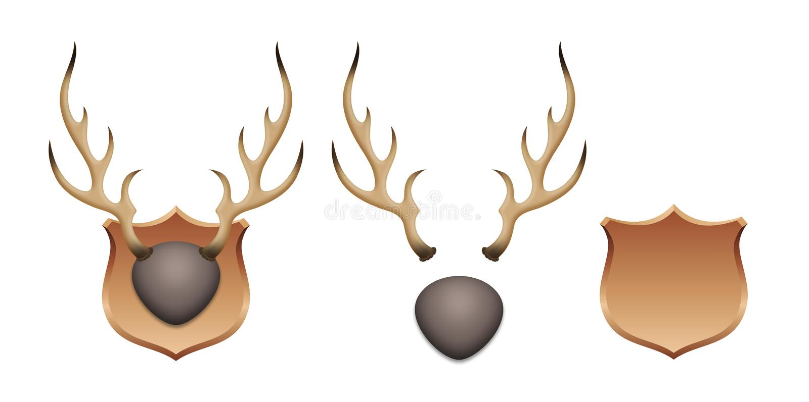 Deer antlers on the wall. Deer antlers on a wall design with all graphic elements separated on white background vector illustration
