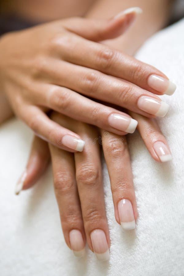 womans руки стоковая фотография rf