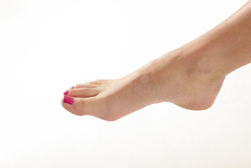 Womans Fuß mit den gemalten Zehennägeln stockbild