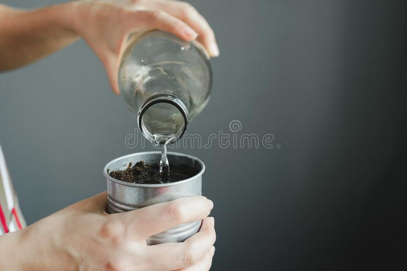 Womans hand holding glass bottle and watering soil in metal pot for houseplant. Indoor gardening, stock photo image stock images