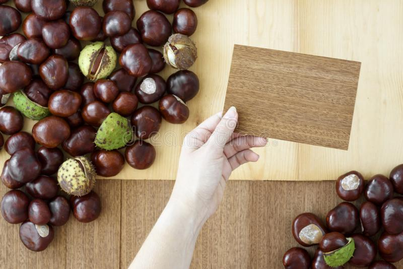 Womans hand holding wooden card, chestnuts in the background. royalty free stock image