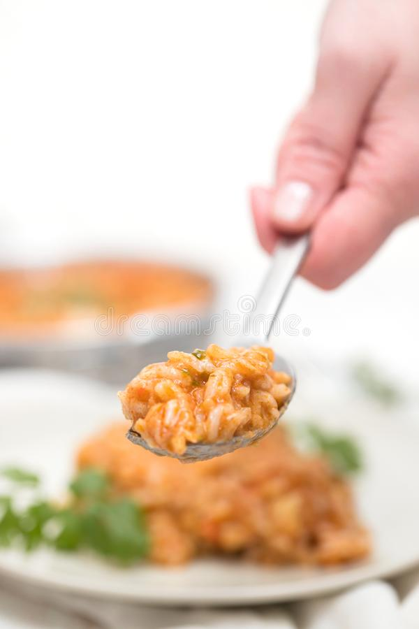 Womans hand with spoon of rice with fish. And seafood in plate stock images