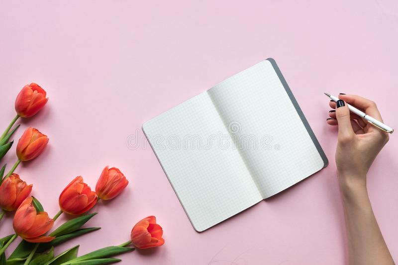 Womans hand writing on a notebook. Pink background with tulips. Place for your text. Womans hand writing on a notebook. Pink background with tulips. Place for stock photo