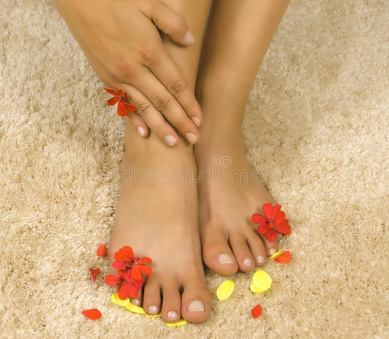 Download Womans legs with petals stock photo. Image of hand, beautiful - 5999160