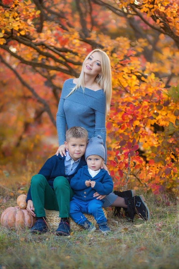 WomanwithTwo knappe leuke broers die van de moederdame op pompoen in de herfst alleen bos zitten stock afbeeldingen