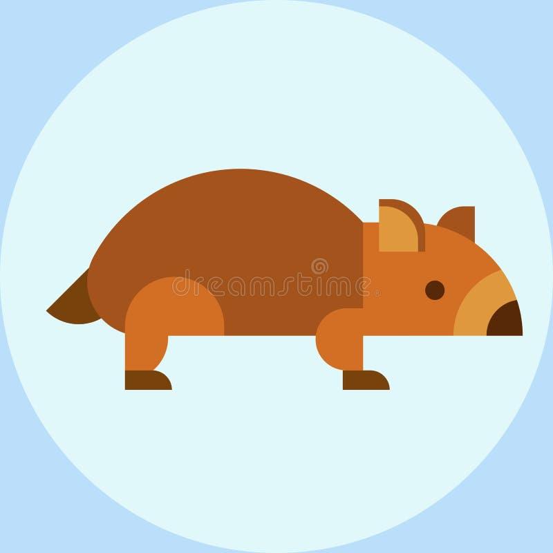 Wombat national park australia herbivore fauna furry outdoors tasmania wildlife australian vector stock illustration