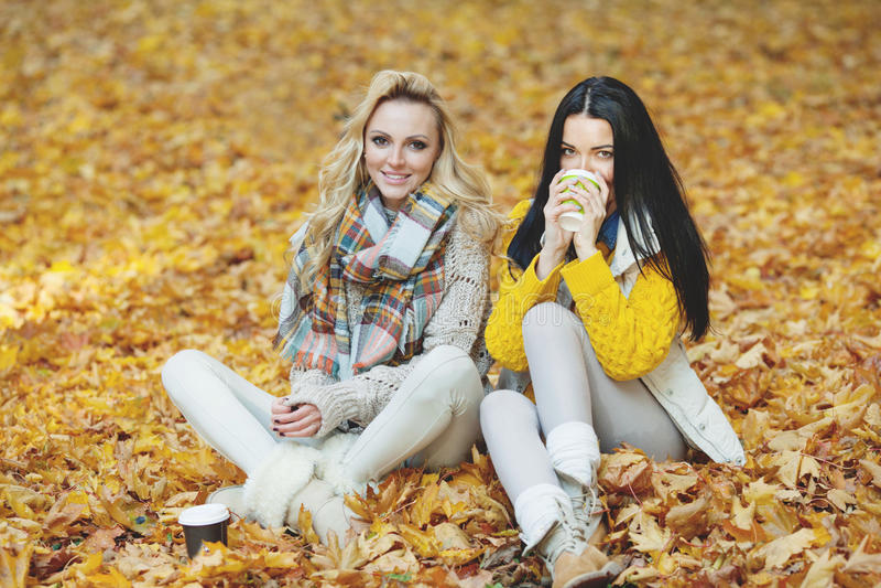 Women in autumn park drink coffee stock photos