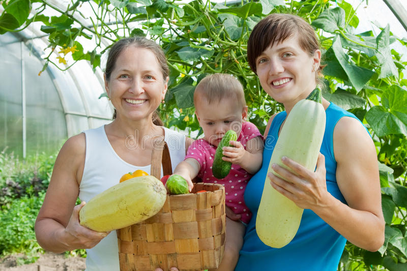 Download Women And Baby  With  Harvested Vegetables Stock Image - Image of outdoors, child: 20838033