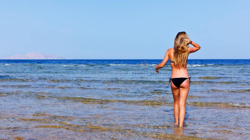 Download Women on the beach stock photo. Image of attractive, beautiful - 20644220