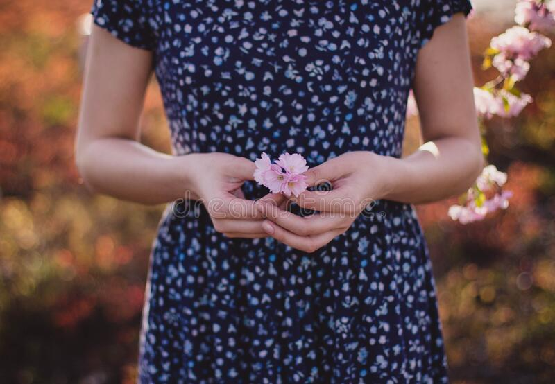 Women In Blue And White Floral Dress With Pink Flower On Hand Free Public Domain Cc0 Image