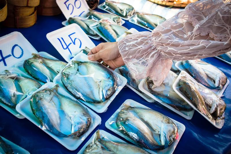 Women are buying mackerel from the market stock image