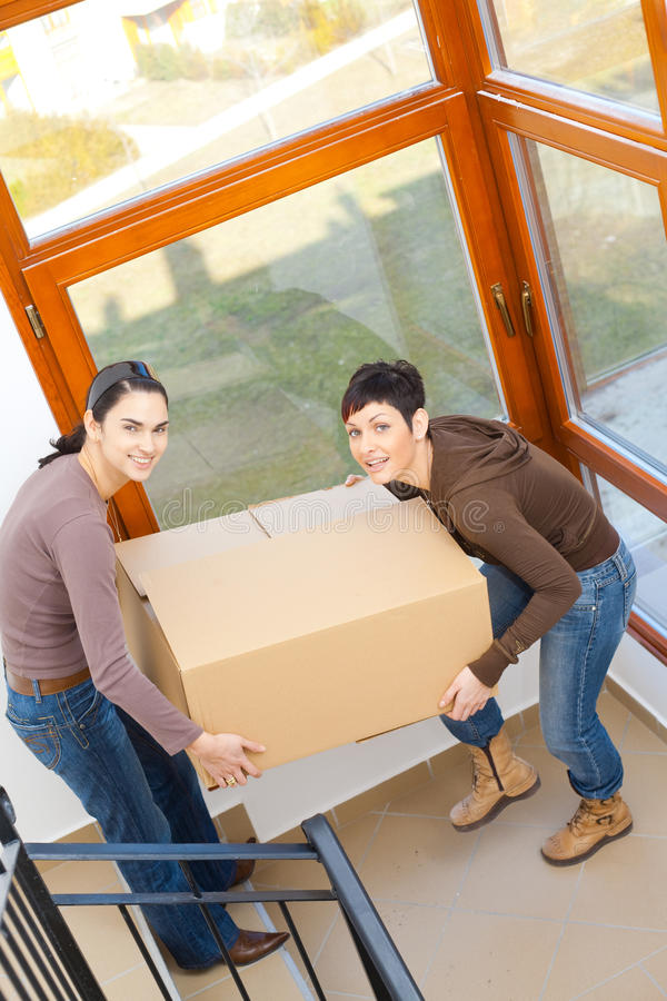 Download Women Carrying Cardboard Box Stock Image - Image: 10646019