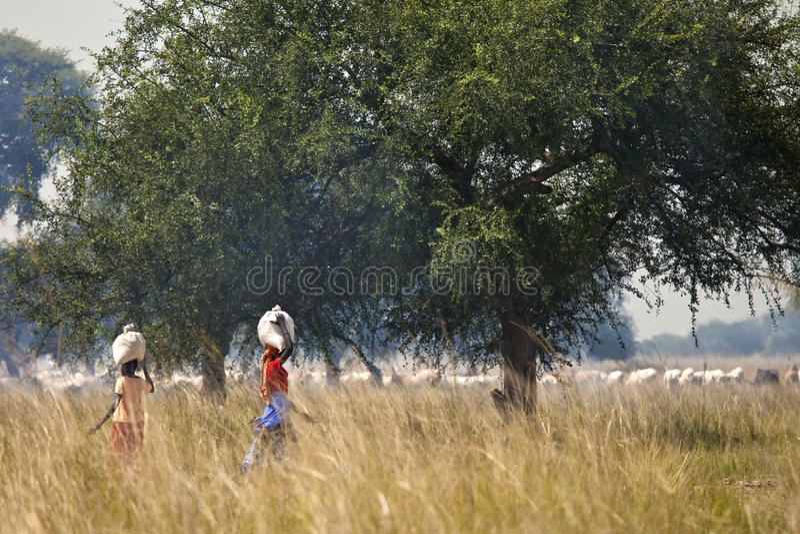 Women carrying loads, Lilir Sudan royalty free stock images