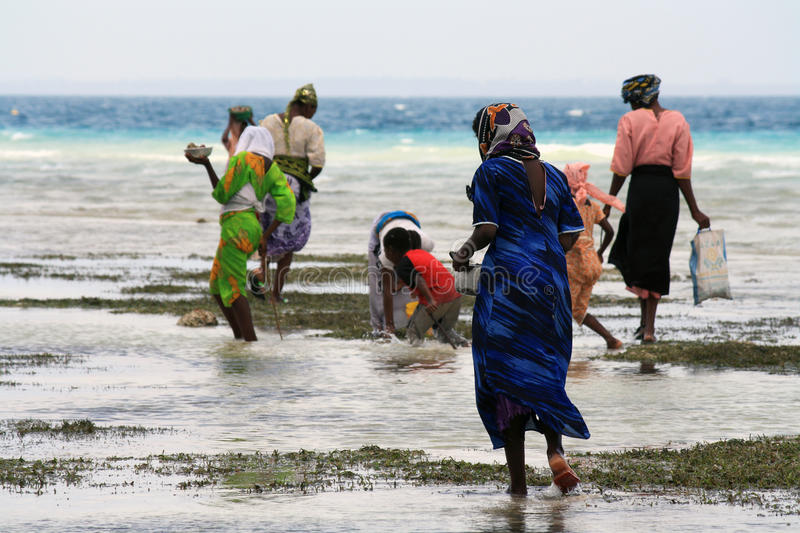 Women and children in Zanzibar royalty free stock image