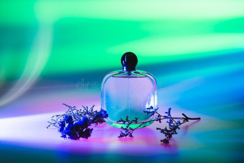 Women' colorido abstracto; perfume de s en la botella con el ramo seco de la flor Publicidad de los productos del perfume Tod imagen de archivo