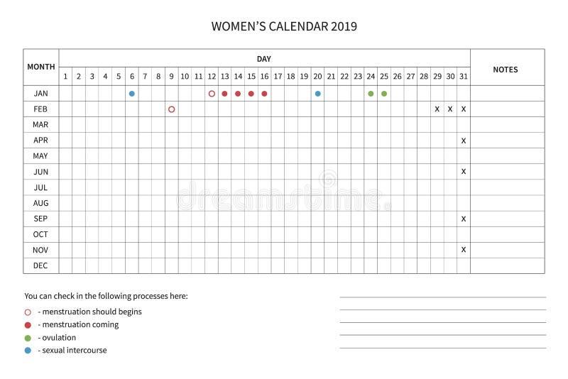 Women cycle calendar. Vector calendar of the women`s cycle. Menstrual cycle. Women health and physiology. Vector women calendar template 2019 stock illustration