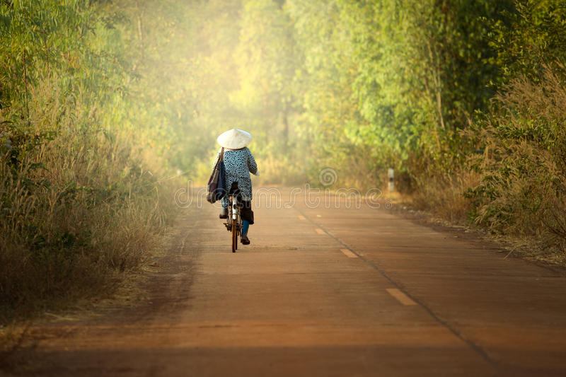 Women cycling on the road royalty free stock image