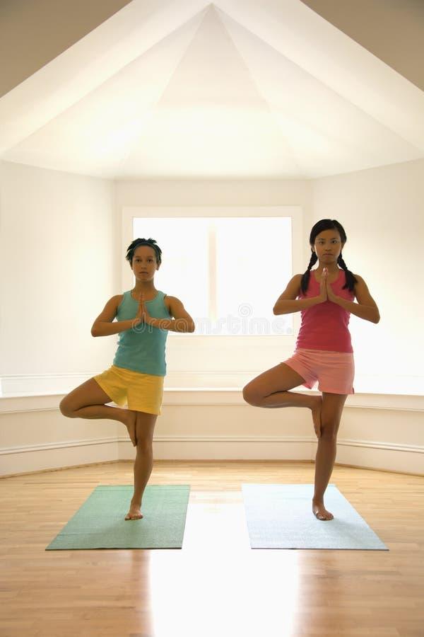 Download Women doing balance pose stock photo. Image of balance - 4247070