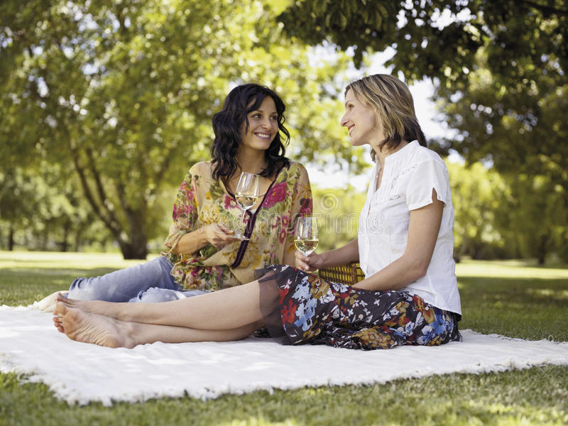Women drinking wine in a park. royalty free stock photos