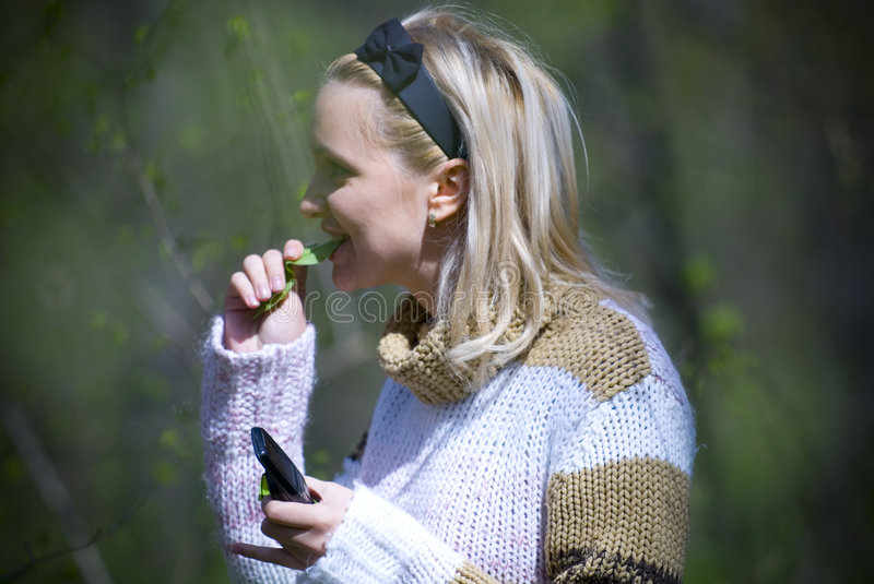 Women eating leaf. Young blonde woman wearing sweater eating leaf royalty free stock image