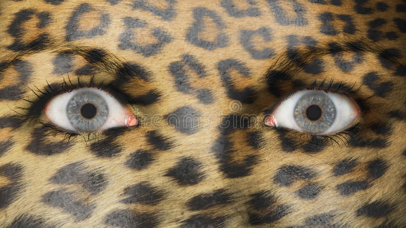 Women eye, close-up, leopard royalty free stock photography
