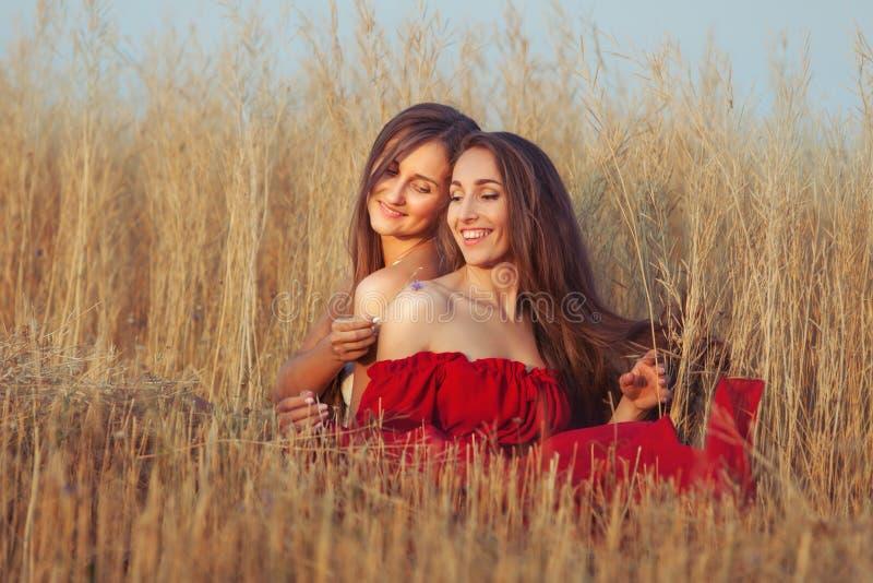 Women flirt in the field. In the field among the tall grass two women flirt stock photo