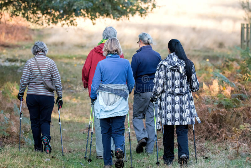 Women& x27; gruppo di camminata di s sull'aumento attraverso il parco immagine stock