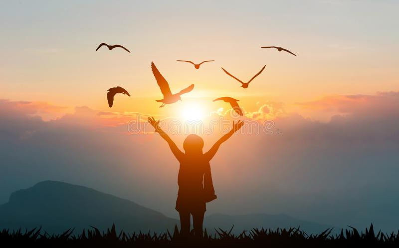 Women holding hands on the mountain evening sunshine show freedom and flying birds royalty free stock photos