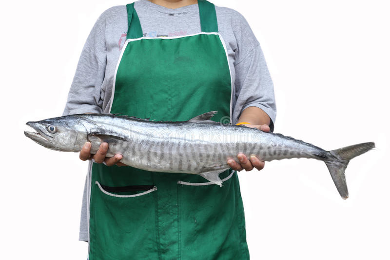 Women holding a wahoo fish or king mackerel fish. In white background royalty free stock photos