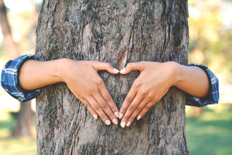 Women hug big tree royalty free stock photography