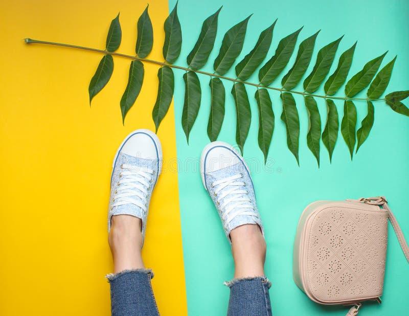 Women& x27 ; jambes de s dans des jeans serrés et déchirés, espadrilles, feuille de fougère, sac photo stock