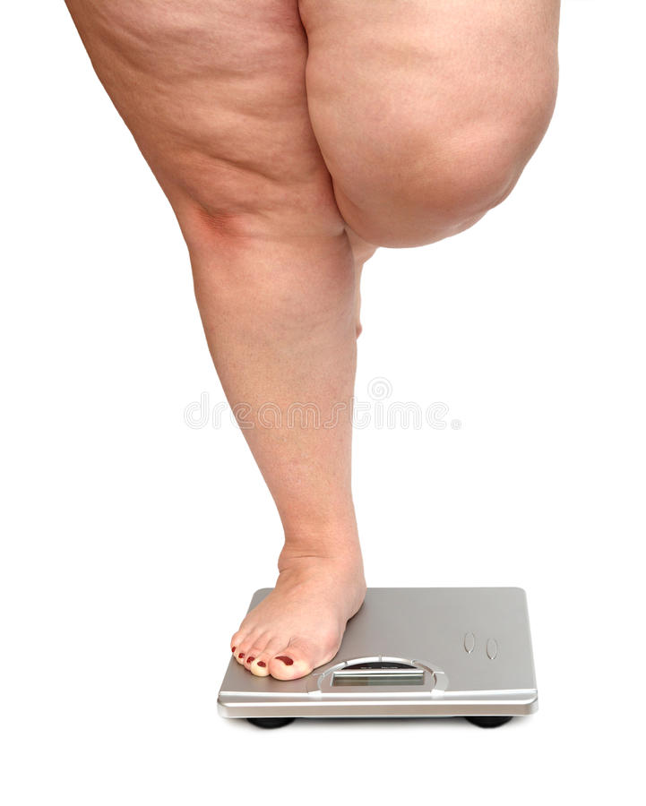 Women legs with overweight. Standing on scales royalty free stock photography