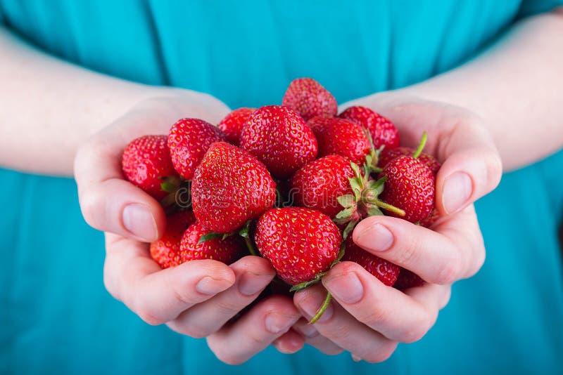 Women&#x27 ; les mains de s tiennent une poignée de fraises images stock