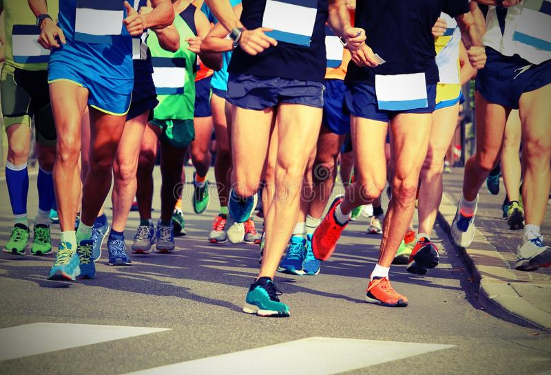 Women and men runners with sneakers royalty free stock image