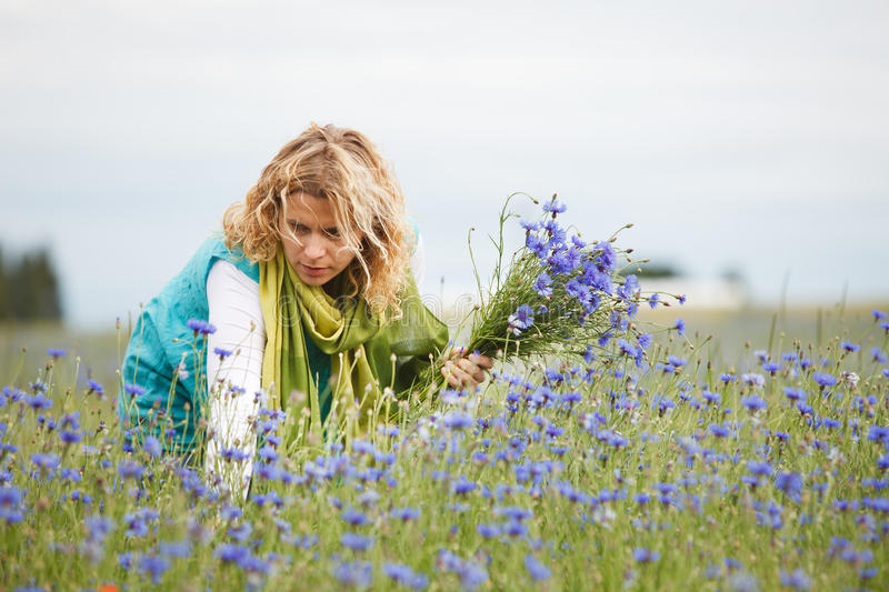 Women picking blue flowers stock photography