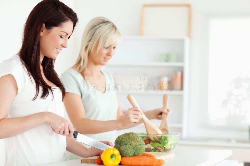 Women preparing dinner stock photography