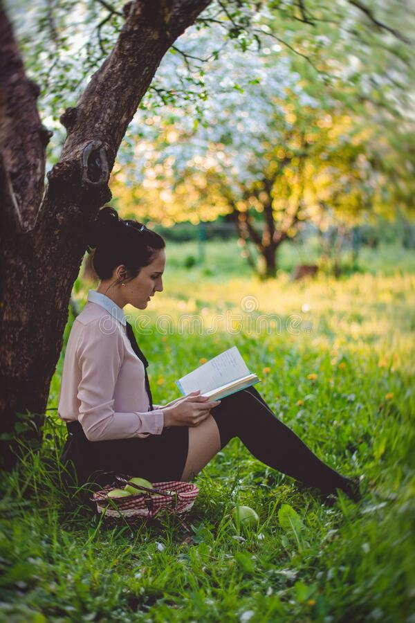 Women Reading a Book Under the Tree royalty free stock images