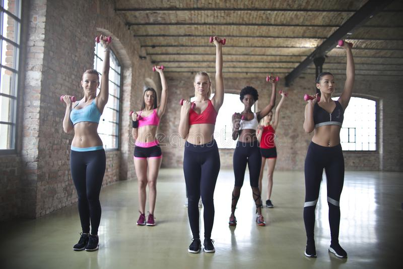 Women's Assorted Sports Bras Raising Their Pink Dumbbells royalty free stock photography