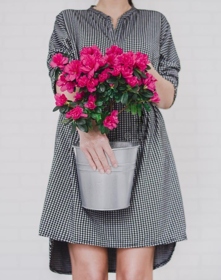 Women's Black and White Midi Dress royalty free stock photo