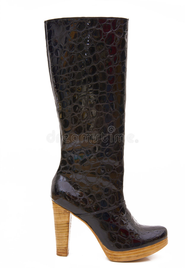 Free Women S Boots Royalty Free Stock Photography - 4849917