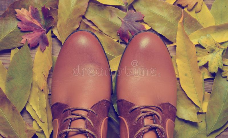 Women& x27;s boots made of brown leather against the background stock photo