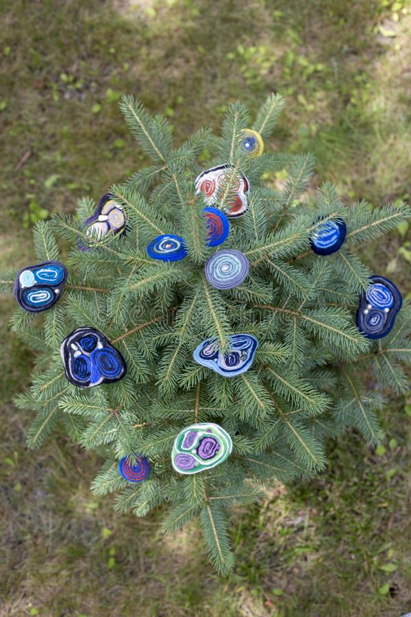 Women`s brooch of fulled wool on branches of green spruce. royalty free stock photography