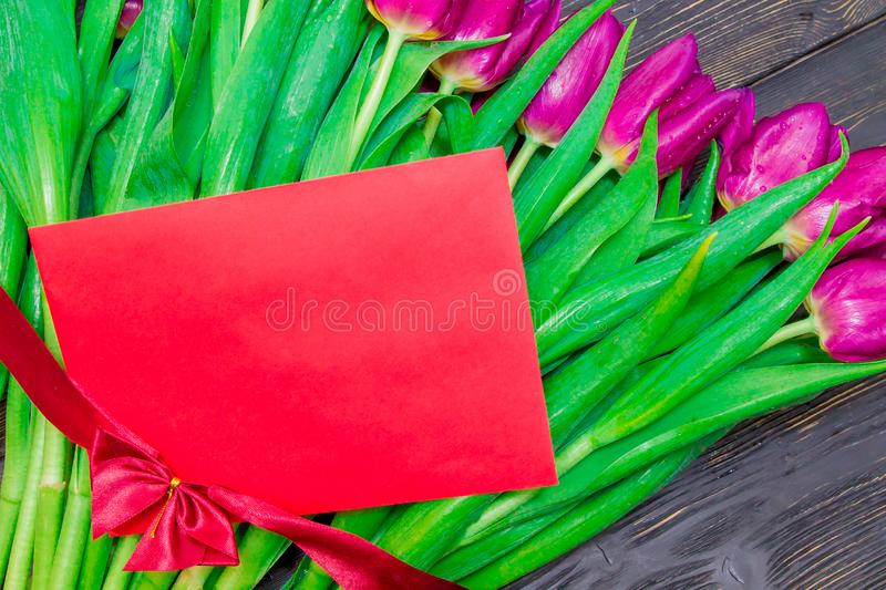 Women`s Day copy space on red card with bright pink tulips on the background stock photography