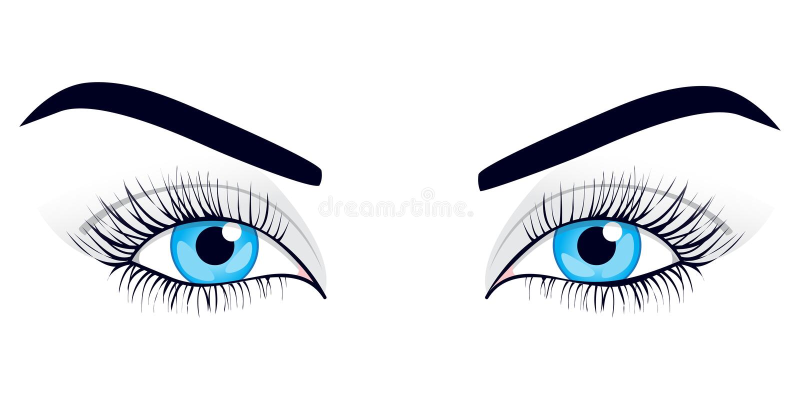 Download Women's Eyes. Vector Illustration. Stock Illustration - Image: 14368150