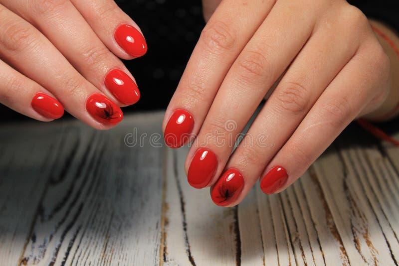 Women& x27; s-Hände mit einer stilvollen Maniküre gut stockfotos